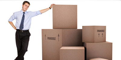 Adayar Dolphin Packers Movers